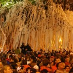 What Should Auburn Do with the Toomer's Trees?